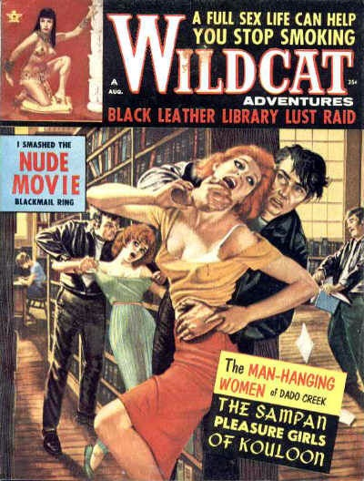 18913436-Wildcat_Adventures_-_1964_08_Aug_-_teen_gangs_or_bikers-8x6