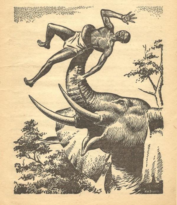 Jungle 1948 winter 0009