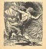 Jungle 1948 winter 0021 thumbnail