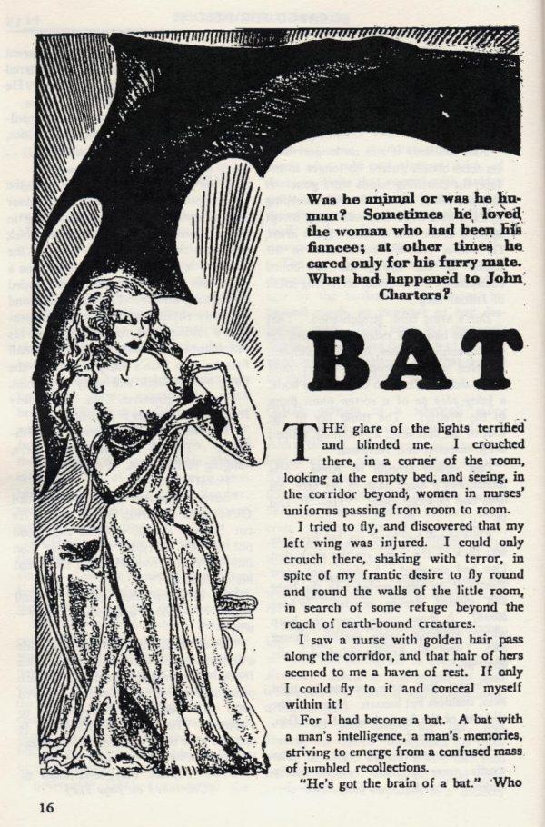 Bat Man 1