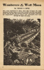 Planet-Stories-1944-06-p073 thumbnail