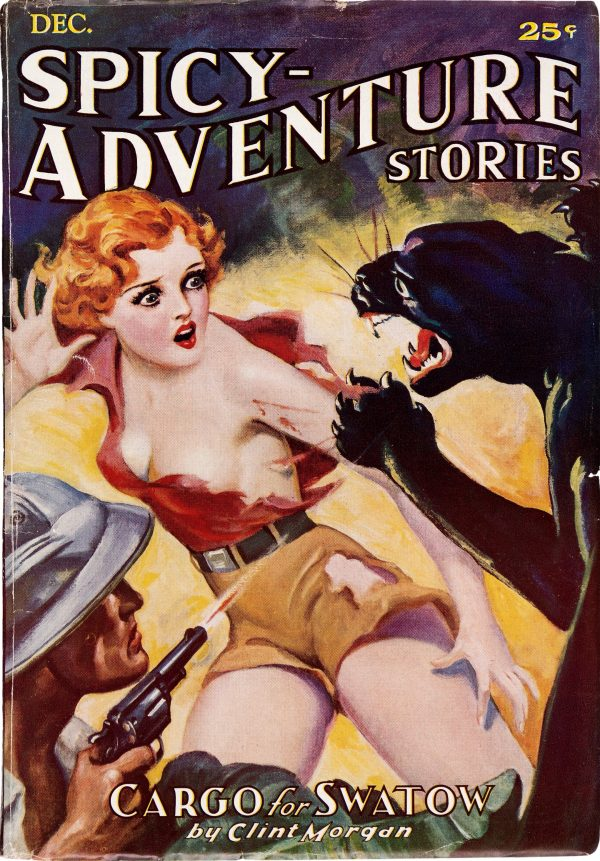 Spicy Adventure Stories - December 1935