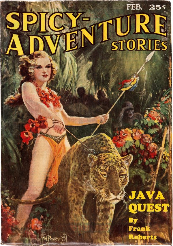 Spicy Adventure Stories - February 1935