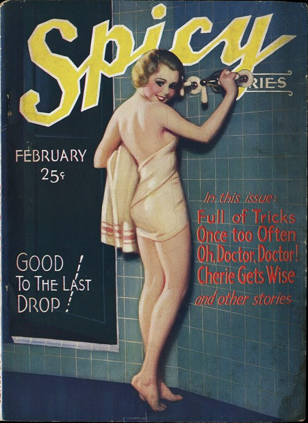 Spicy Stories Feb. 1932
