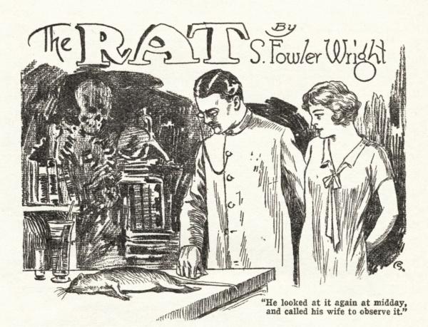 WT-1929-03-p051