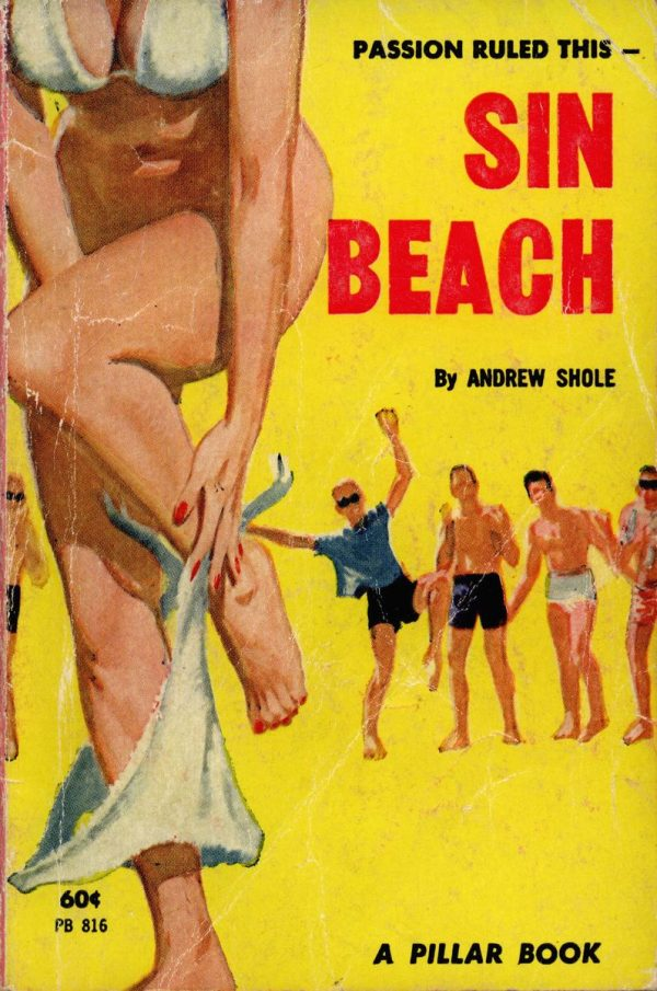 pb-816-sin-beach-by-andrew-shole-eb