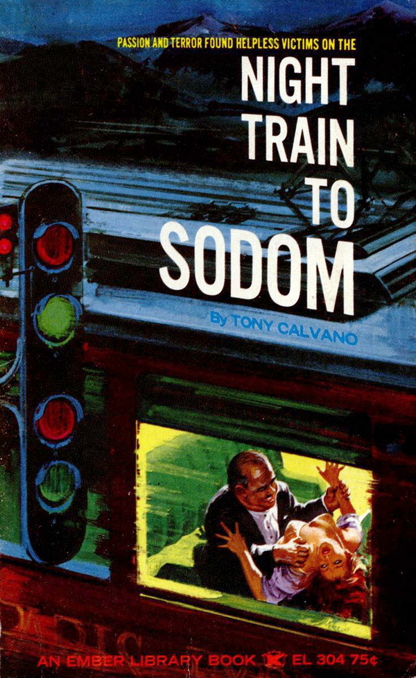 el-304-night-train-to-sodom-by-tony-calvano-eb