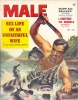 MaleDec1956 thumbnail