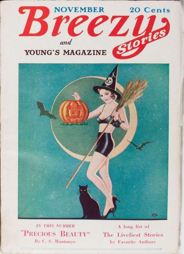 Breezy Stories November 1933