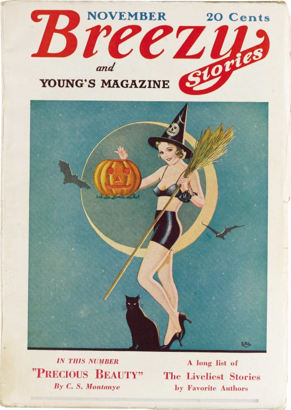 Breezy Stories and Young's Magazine November 1933