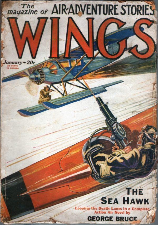 Wings January 1929
