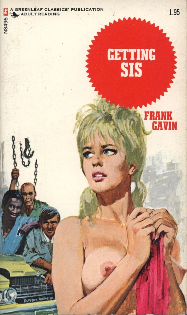 ns-496-getting-sis-by-frank-gavin-eb