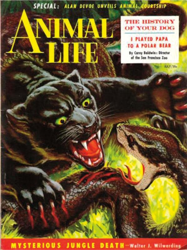Animal Life July 1954