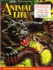 Animal Life July 1954 thumbnail