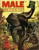 Male November 1954 thumbnail