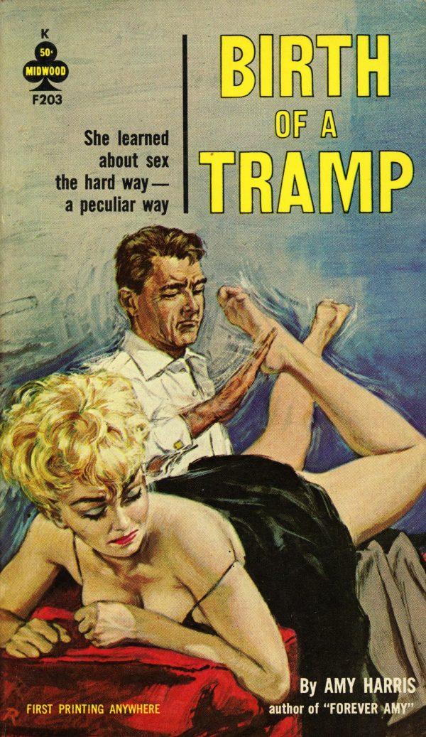 34230670803-midwood-books-f203-amy-harris-birth-of-a-tramp