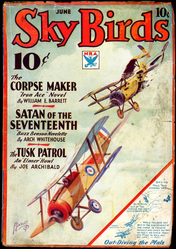 SKY BIRDS. June 1934