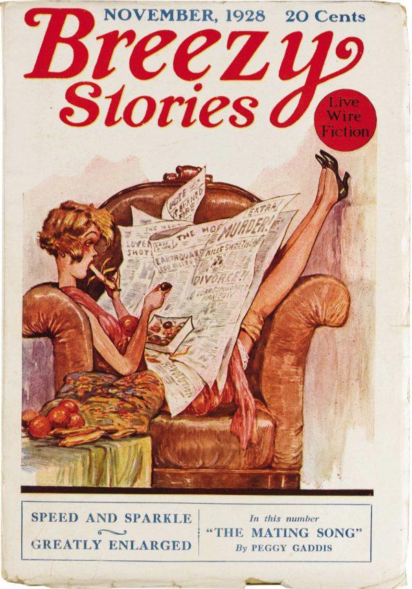 Breezy Stories November 1928