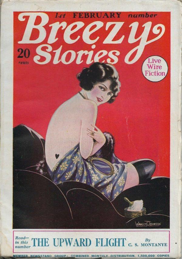 Breezy Stories February 1925