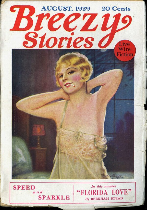 Breezy Stories August 1929