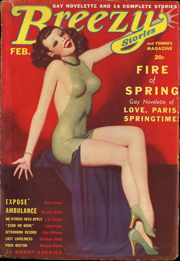 Breezy Stories February 1937